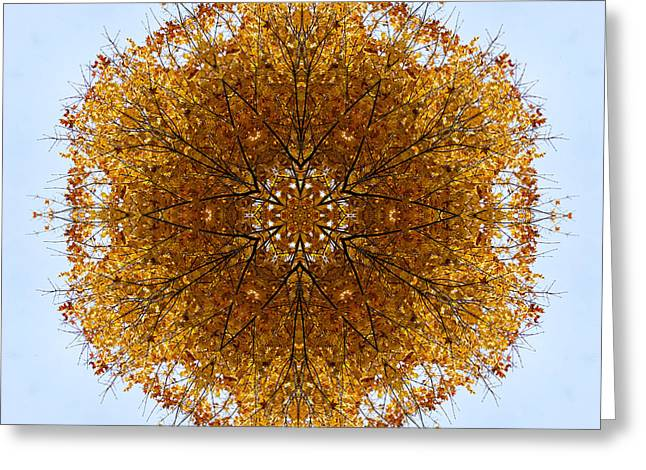 Foliage Creations 9 Greeting Card by Lilia D