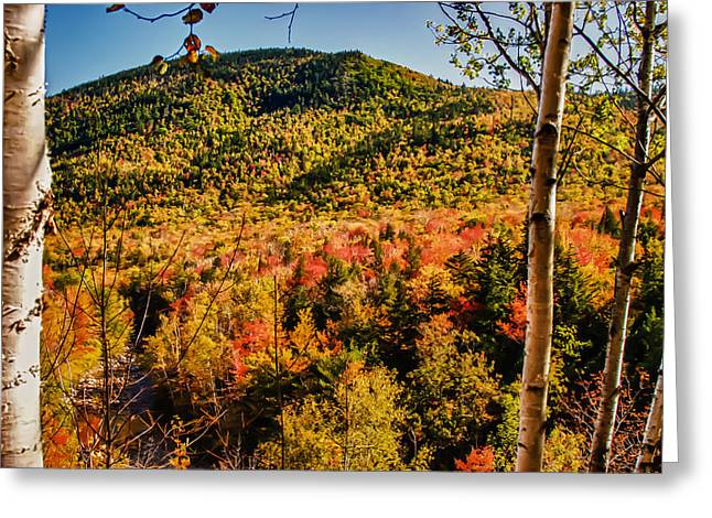Foliage View From Crawford Notch Road Greeting Card