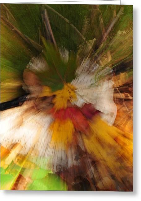 Foliage Zoom Greeting Card by Nancy Marshall