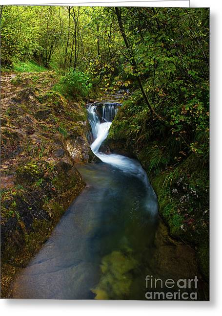 Greeting Card featuring the photograph Follow It I by Yuri Santin