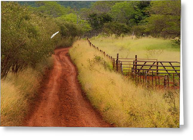 Follow The Red Dirt Road Greeting Card