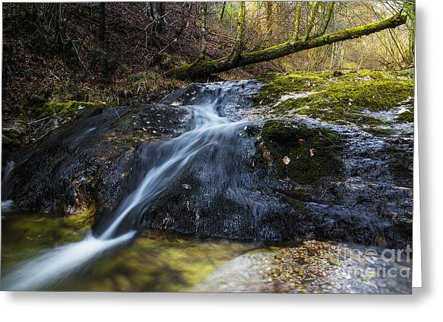 Greeting Card featuring the photograph Follow The Stream by Yuri Santin