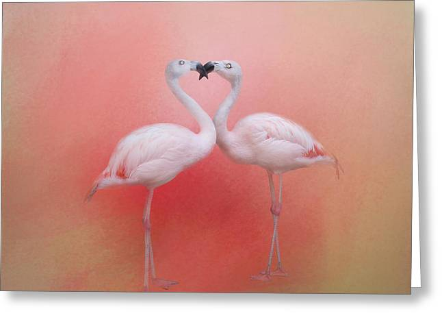 Fond Flamingos Greeting Card by TK Goforth