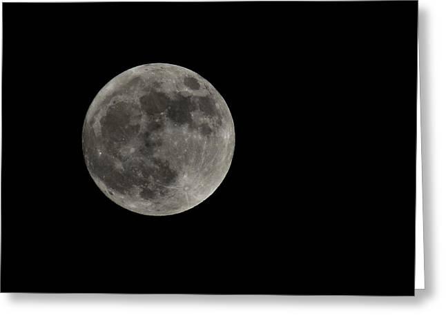 Fool Moon Greeting Card by Joshua Massenburg