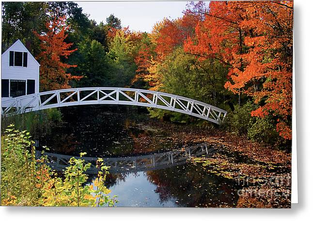 Foot Bridge Over A Pond Greeting Card
