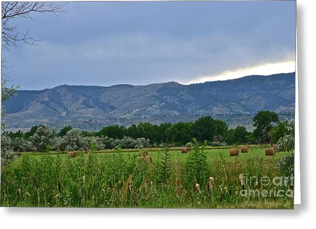 Foothills Of Fort Collins Greeting Card