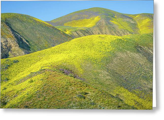 Foothills, Temblor Range Greeting Card by Joseph Smith