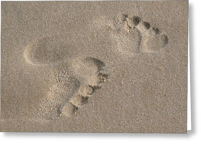 Footprints In The Sand 2 Greeting Card by Susan  Lipschutz