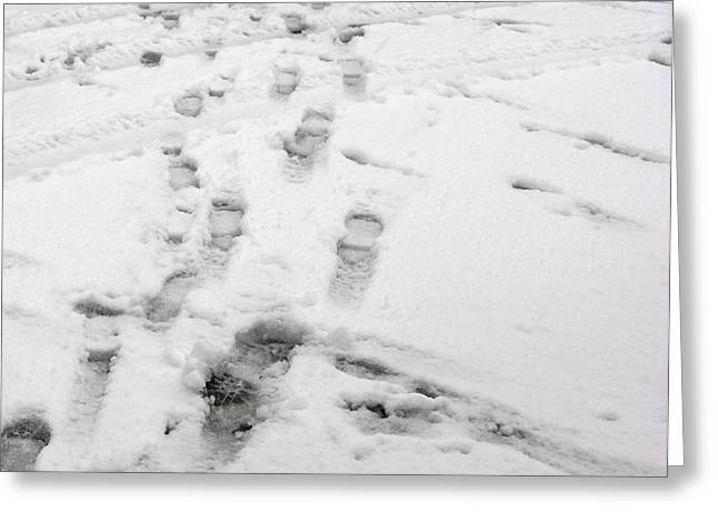 Footprints In The Snow Greeting Card by Janis Beauchamp