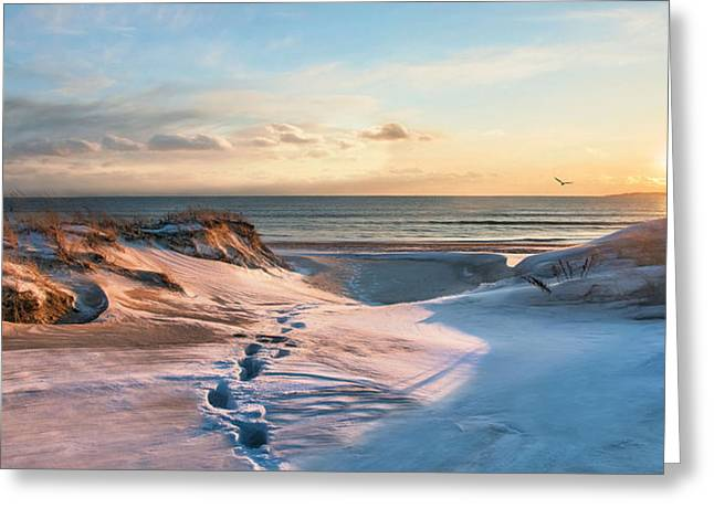 Greeting Card featuring the photograph Footprints In The Snow by Robin-lee Vieira