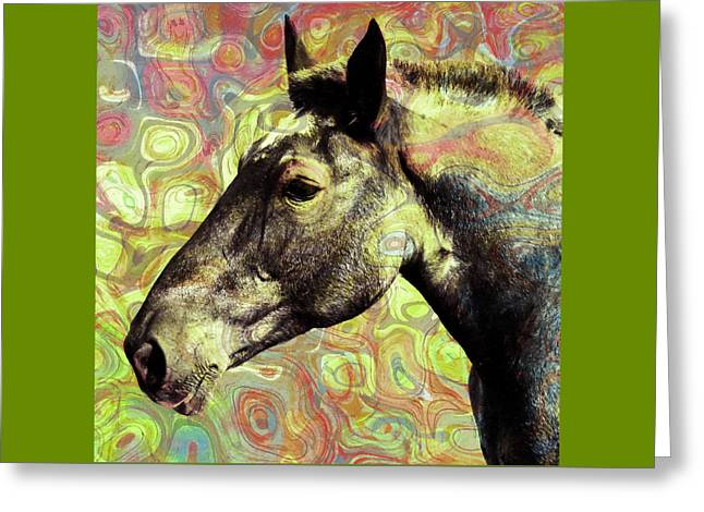 For The Love Of A Horse Greeting Card by Stacey Chiew