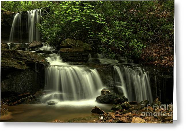 Forbes Forest Cascades Greeting Card by Adam Jewell