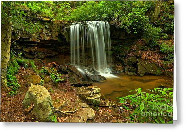 Forbes Forest Lush Falls Greeting Card by Adam Jewell