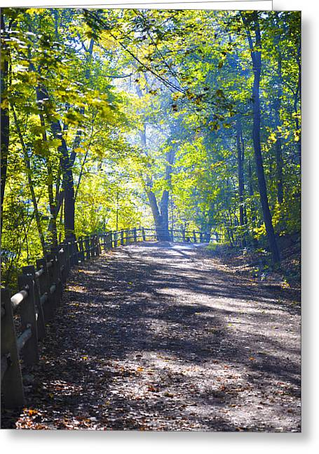 Forbidden Drive - Philadelphia Greeting Card by Bill Cannon