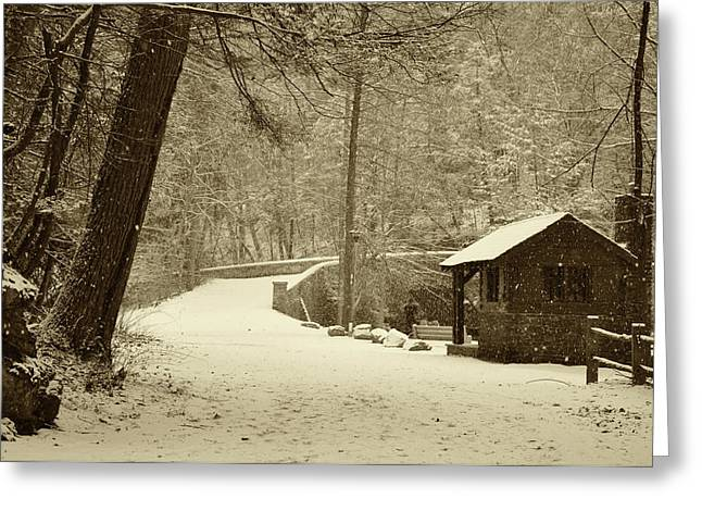 Forbidden Drive In Winter Greeting Card by Bill Cannon