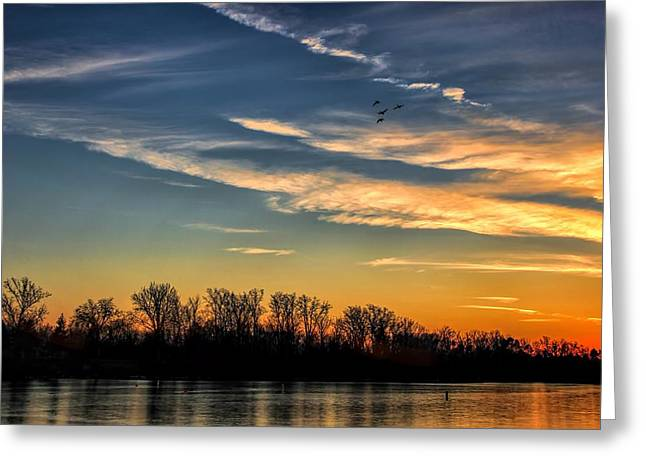 Ford Lake Sunset Greeting Card by Pat Cook