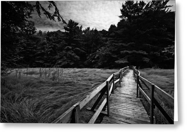 Fore River Marsh Greeting Card