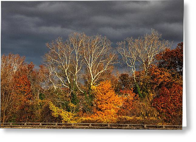 Foreboding  Skies Greeting Card by Jessica Jenney