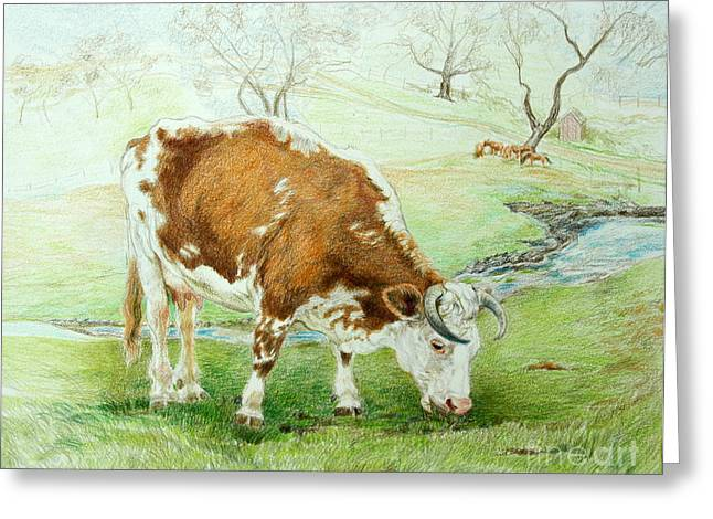 Pasture Scenes Drawings Greeting Cards - Foremans Favorite Greeting Card by Jill Iversen