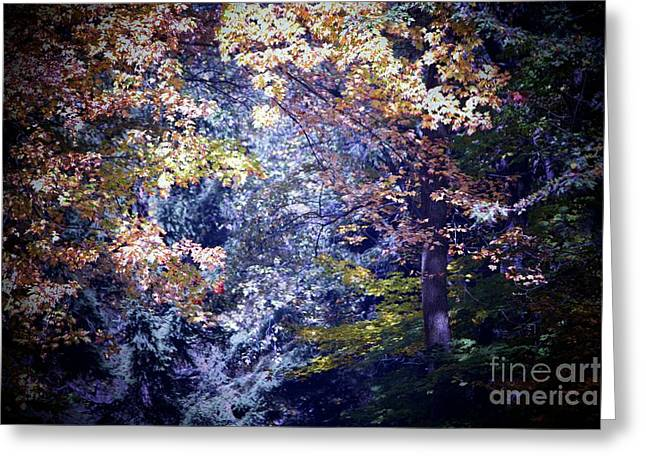Forest Abstract Greeting Card by Marjorie Imbeau