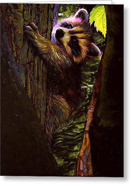 Forest Baby Raccoon Greeting Card by Kelly McNeil