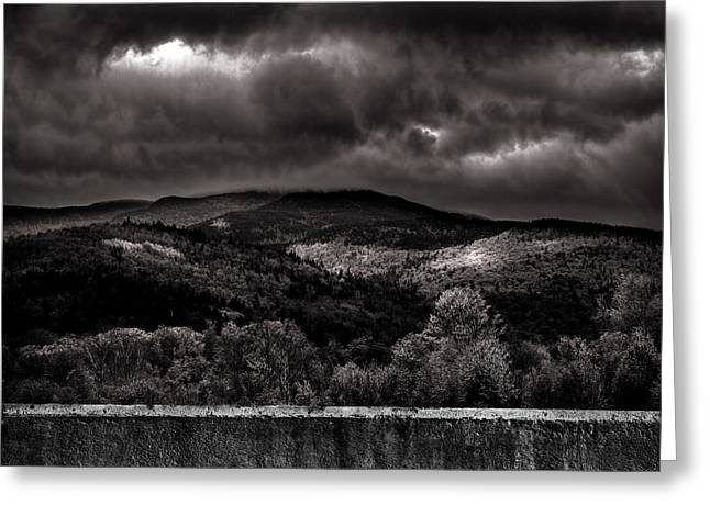 Forest Behind The Wall Greeting Card by Bob Orsillo
