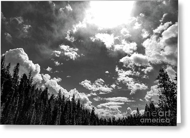 A New Day, Black And White Greeting Card