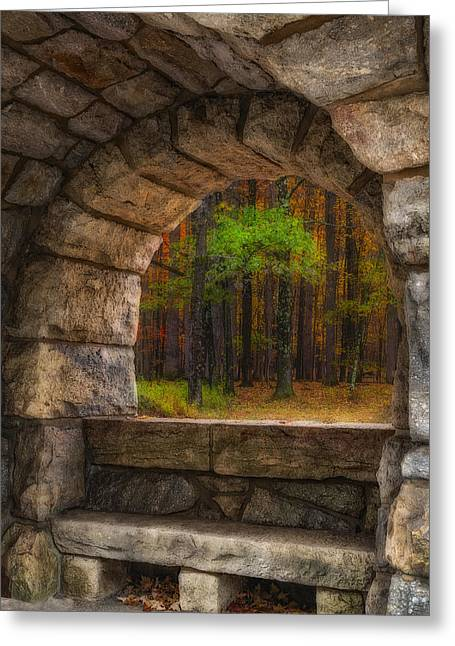 Forest Contemplation Invite Greeting Card by Susan Candelario