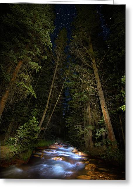 Forest Creek Greeting Card by Mark Andrew Thomas