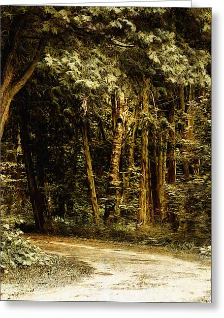Forest Curve Greeting Card