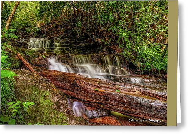 Greeting Card featuring the photograph Forest Falls by Christopher Holmes