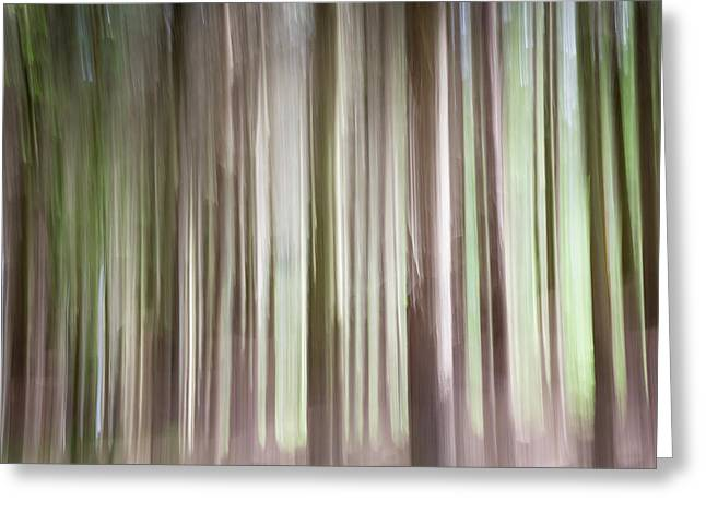 Forest Fantasy 3 Greeting Card