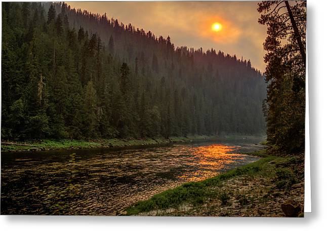Forest Fire Sunset Greeting Card by Brad Stinson