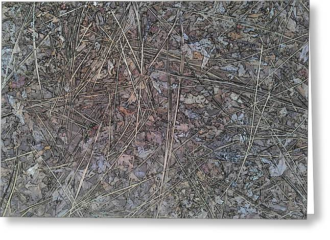 Forest Floor Texture Greeting Card