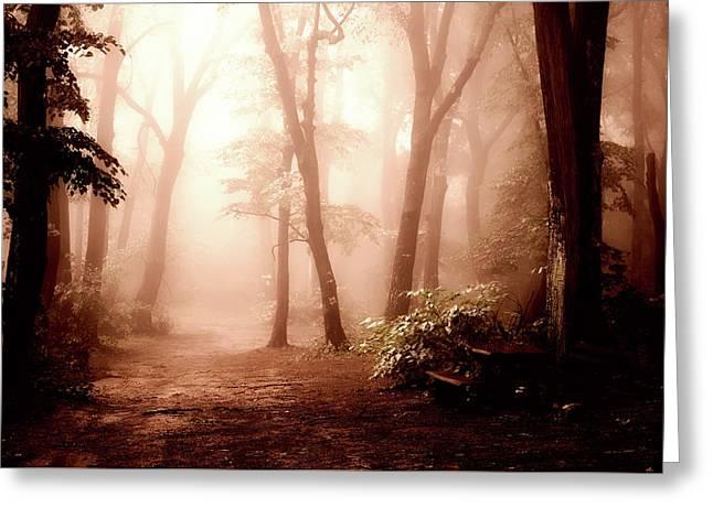 Forest Fog Greeting Card by Goran Vucicevic
