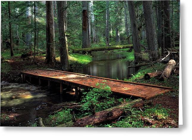 Forest Foot Bridge Greeting Card by Leland D Howard