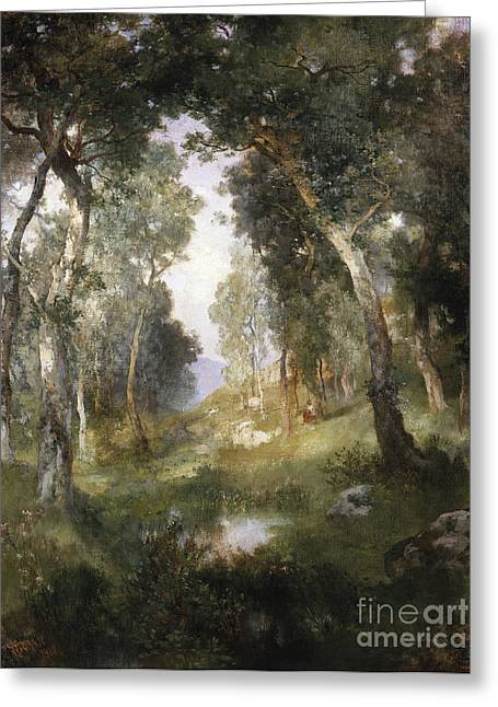 Undergrowth Greeting Cards - Forest Glade Greeting Card by Thomas Moran
