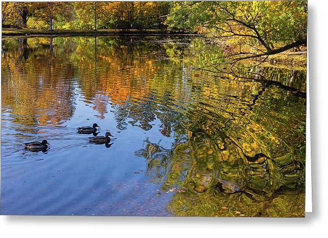 Forest Hill Reflections II Greeting Card