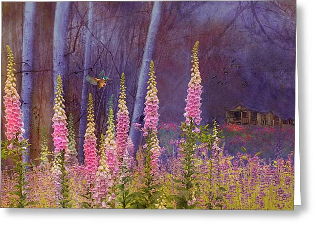 Forest Illusion Greeting Card
