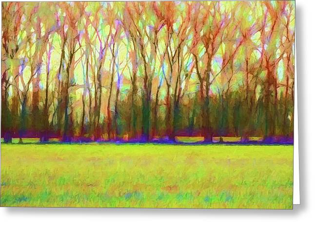 Forest In Autumn Light Greeting Card