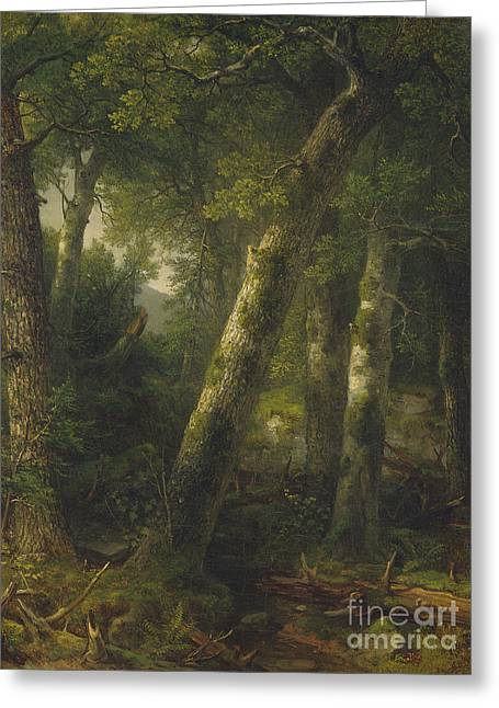 Forest In The Morning Light Greeting Card by Asher Brown Durand