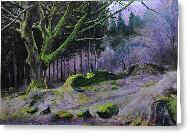 Forest In Wales Greeting Card by Harry Robertson