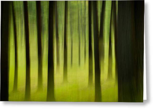 Greeting Card featuring the photograph Forest by Joye Ardyn Durham