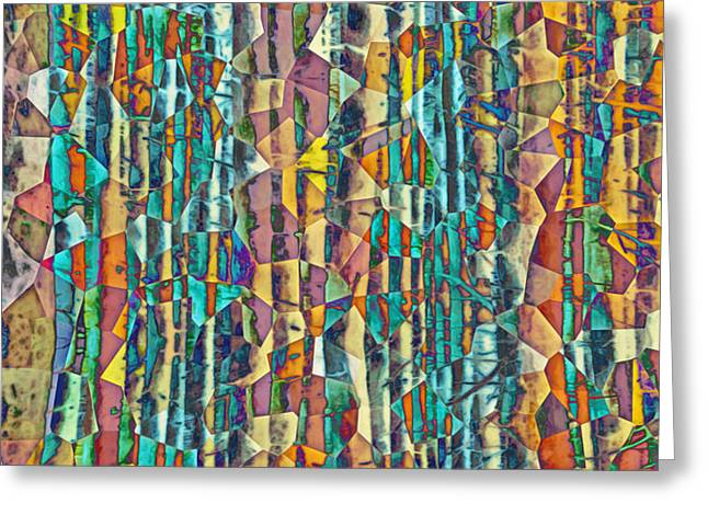 Forest Kaleidescope Greeting Card by Hal Halli