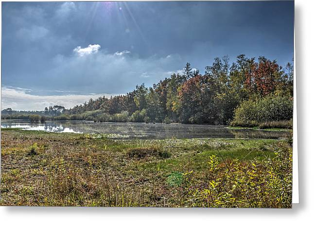 Forest Lake In Autumn Greeting Card