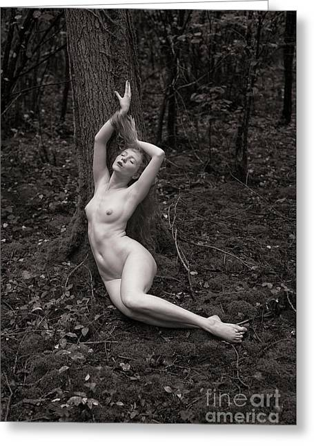 Forest Nude Greeting Card