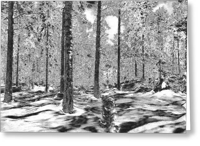 Forest Of Ice And Snow Greeting Card