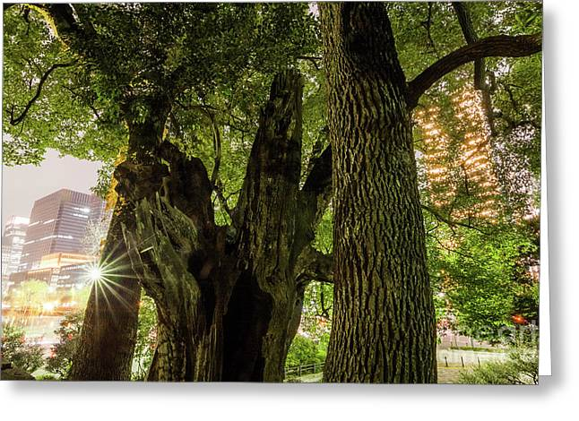 Greeting Card featuring the photograph Forest Of Tokyo by Tatsuya Atarashi