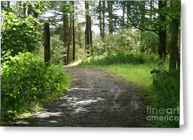 Forest Path. Greeting Card