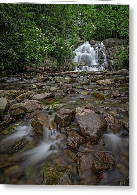 Forest Peace At Hawk Falls Greeting Card